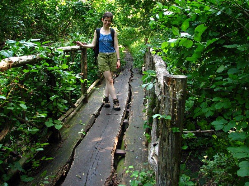 Rustic Wooden Footbridge