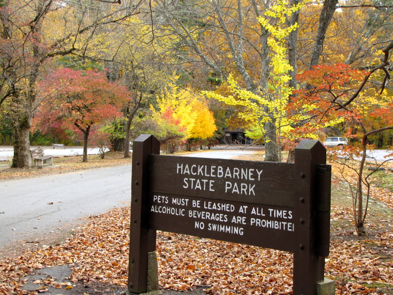 Image result for hacklebarney state park